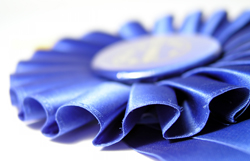 Make yours a Blue Ribbon entry!