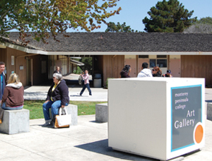 Read the Full Call from Monterey Peninsula College Art Gallery!