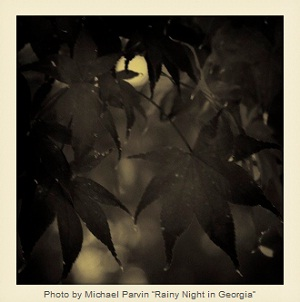 Rainy Night in Georgia by Michael Parvin
