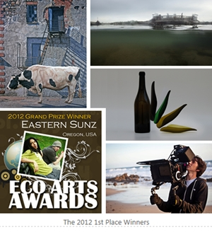 Learn more about the ECO Art Awards!