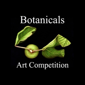 Learn more about the Botanicals show from the Light Space and Time Gallery!