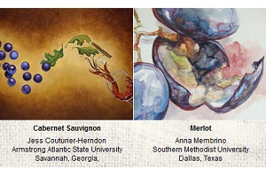Learn more about the winners of the 2011 Canvas Wine Label Contest!