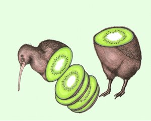 Kiwi Bird by Featured Artist Melody Sage