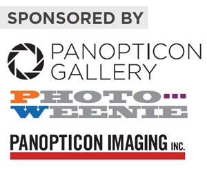 Learn more from the Panopticon Gallery!