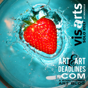 Learn more about the 2017 Solo Exhibition opportunities from VisArts at Rockville!