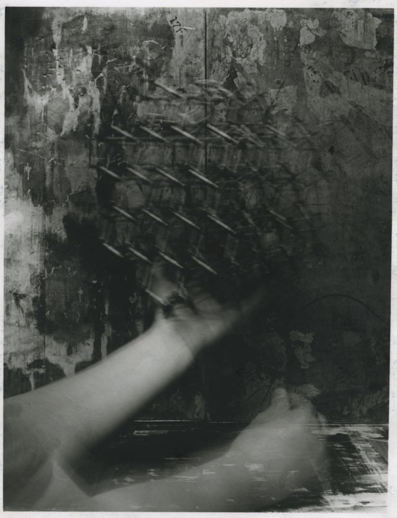 Learn more about the Transience exhibit from L.A. Photo Curator!