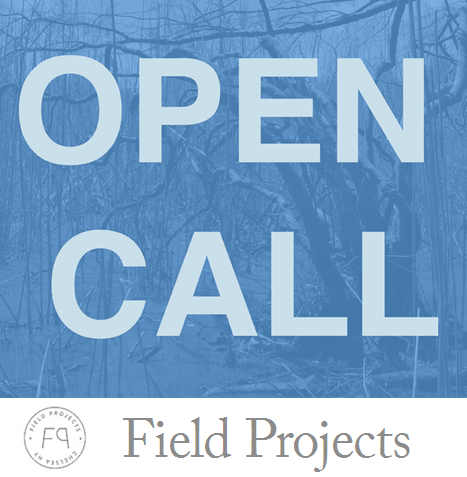 Learn more about the Winter 2016 Open Call from Field Projects!