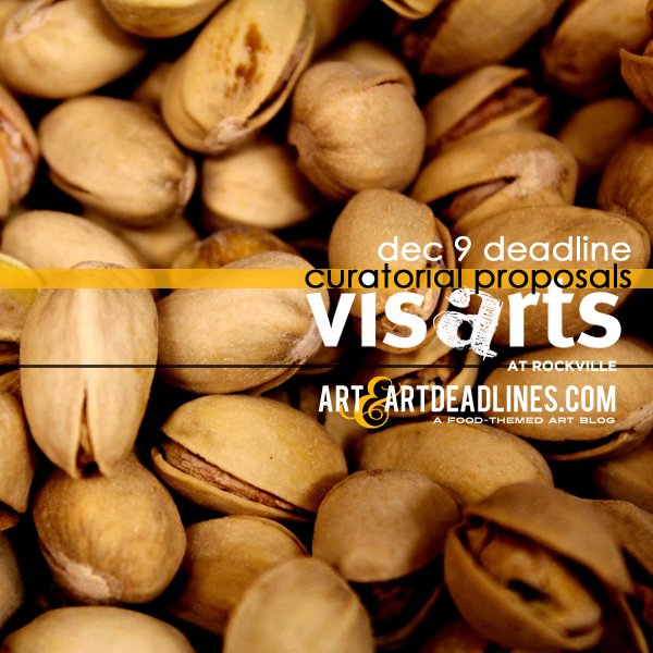 learn-more-about-submitting-curatorial-proposals-from-visarts-at-rockville-1