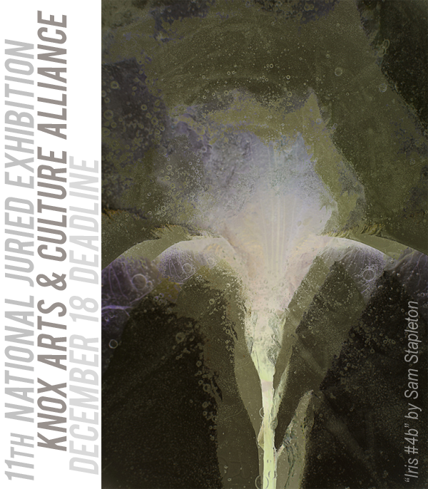Learn more about the 11th National Juried Exhibition from Knox Arts and Culture Alliance!