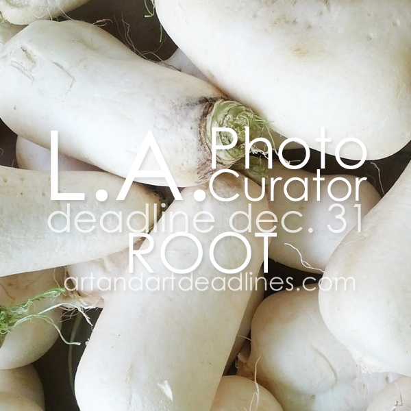 Learn more about the Root Exhibit from LA Photo Curator!