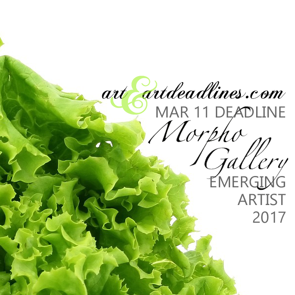Learn more about the Emerging Artist 2017 exhibit from the Morpho Gallery!