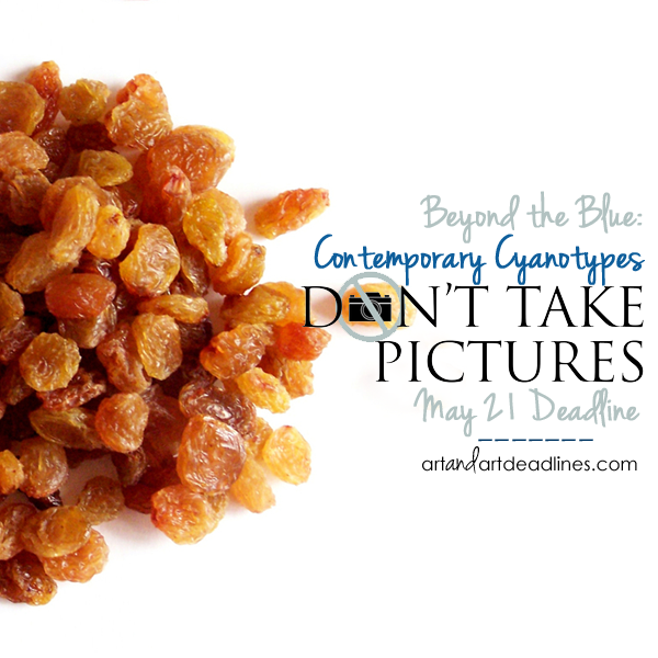 Learn more about the Call for Contemporary Cyanotypes from Don't Take Pictures!