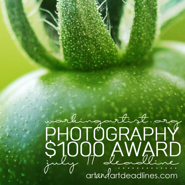 Learn more about the $1000 Photography Award from WorkingArtist.org!