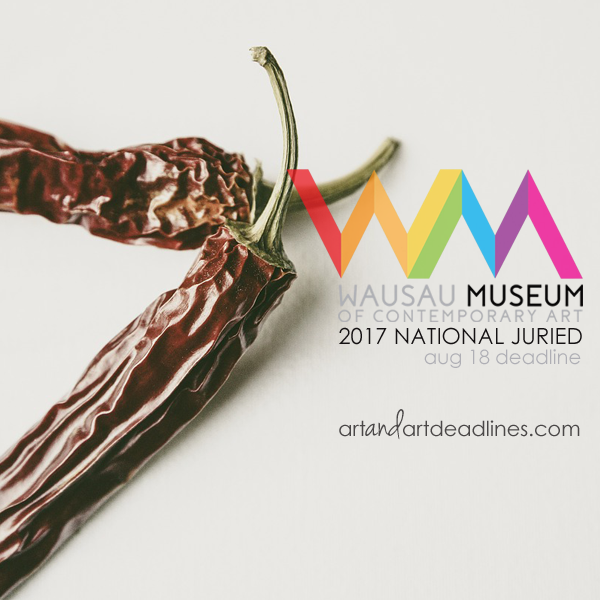 Learn more about the 2017 National Juried Exhibit from Wausau Museum of Contemporary Art!