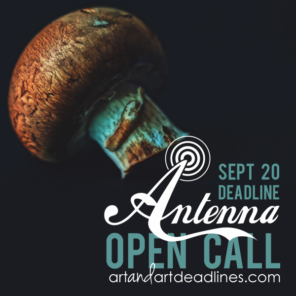 Learn more about the National International Open Call 2018 from Antenna Gallery!