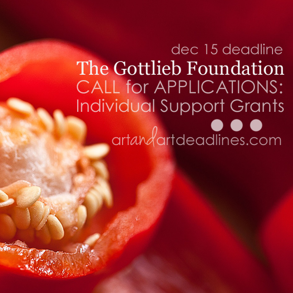 Learn more about Individual Support Grants from The Gottlieb Foundation!