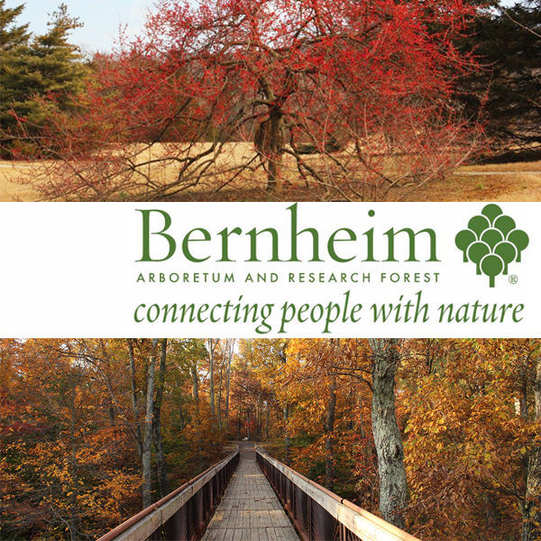 Learn more from the Bernheim Arboretum and Research Forest!
