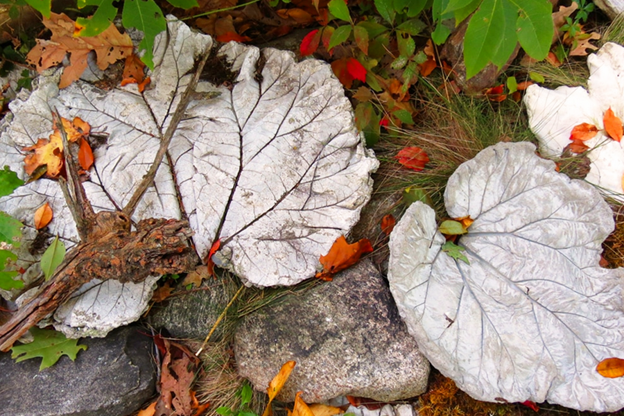 """""""Migration"""", a site-specific installation of concrete life-cast leaves, by Elizabeth White"""