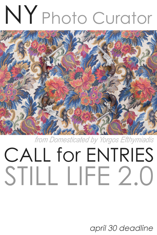 Learn more about the Stil Life 2.0 from NY Photo Curator!