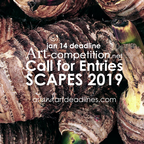 CALL for ENTRIES: Scapes 2019 | Art and Art Deadlines com